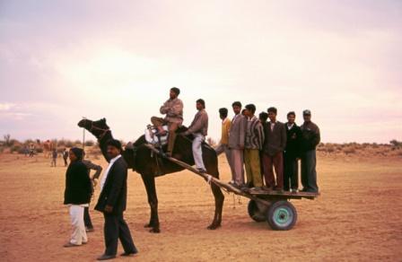 camel-festival.JPG